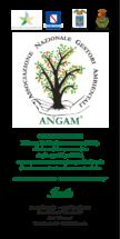 Invito-III-Convegno-ANGAM