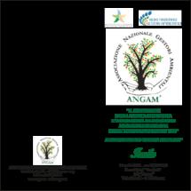 invito-IV-Convegno-ANGAM-140418-1